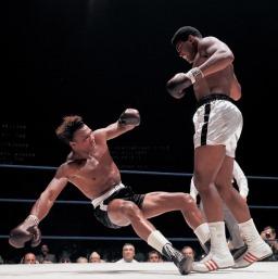 الوزن الثقيل بطل الملاكمة محمد علي (صور 4)